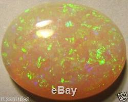 Gem Crystal Opal Solide De Coober Pedy 17x13.5x5.3mm 7.89carats