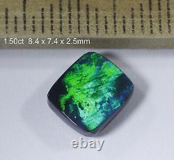 Opal Noir Massif Lightning Ridge De Qualité Avec Des Couleurs Brillintes! 1.50ct