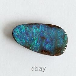Opale De Boulder 7.77ct 19.7 X 11.9mm Pierre Lâche Naturelle D'opale Australienne